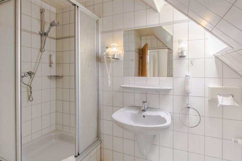 Badezimmer mit Dusche im Zimmer